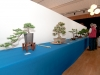Bonsaiausstellung Bad Salzschlirf 2012